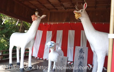砥鹿神社のシカファミリー