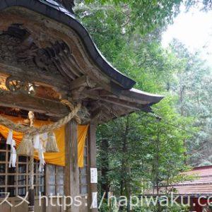 金持神社で御朱印を拝受|授与所の受付時間・アクセス・周辺のランチ情報も紹介