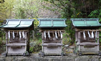 大歳神社 和歌山