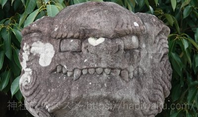 小津神社の狛犬