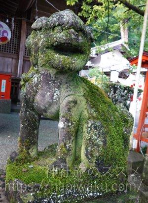 椙本神社の狛犬