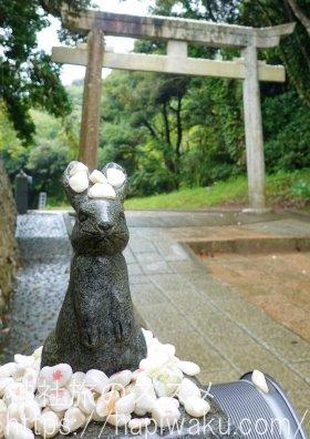 白兎神社の縁結び石
