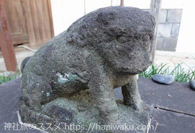 安井金比羅宮の狛犬